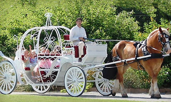 Princess of Tides - Mazyck - Wraggborough: $15 for a Horse-Drawn Cinderella Carriage Ride for Two from Princess of Tides ($30 Value)