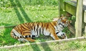 The Zoo at Jo-Don Farms: The Zoo at Jo-Don Farms Admission for Two, Four, or Six to Jo-Don Farms (40% Off)
