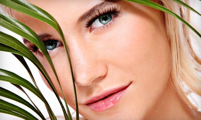 A Center for Aesthetic Surgery - North Andover: One, Two, or Three Microdermabrasion Sessions at A Center for Aesthetic Surgery in North Andover (Up to 63% Off)