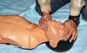 911 Medical Training Llc: $99 for $180 Worth of Services at 911 Medical Training
