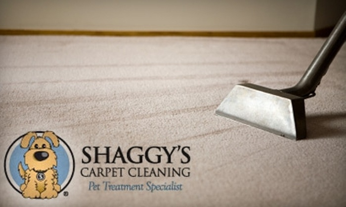 Shaggy's Carpet Cleaning - Paradise Valley: $59 for a Carpet Cleaning of Three Rooms from Shaggy's Carpet Cleaning ($125 Value)
