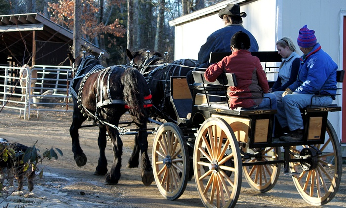Cornerstone Ranch - Cornerstone Ranch: Group Horse-Drawn Wagon Ride for Two or Four, or Private Carriage for Four from Cornerstone Ranch (Up to 54% Off)