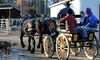 Cornerstone Ranch - Holden: Group Horse-Drawn Wagon Ride for Two or Four, or Private Carriage for Four from Cornerstone Ranch (Up to 54% Off)