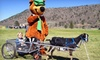 Yogi Bear's Jellystone Park-Colorado - Larkspur: Yogi Bear–Themed Earth Day Outings at Jellystone Park at Larkspur (Up to 57% Off). Four Options Available.