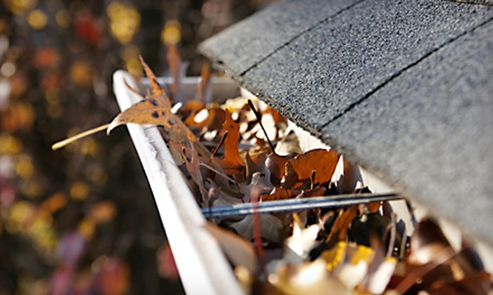 Specialty Gutter - Jackson: $68 for Up to 150 Feet of Gutter-Cleaning Services from Specialty Gutter (Up to $150 Value)