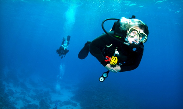 Scuba Hut of Maryland - Glen Burnie: Try Scuba Class for One or Two or Basic Open-Water Course at Scuba Hut of Maryland in Glen Burnie (Up to 72% Off)