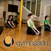 72% Off Fitness Passes to Gymnasium