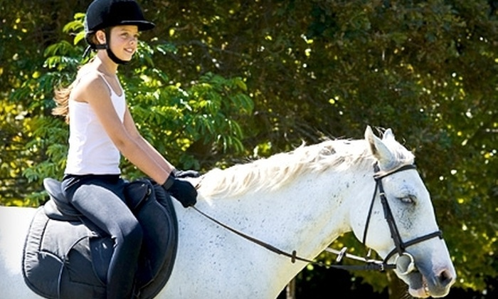 Luton Riding Academy - Grosse Ile: $39 for Two Private Horseback-Riding Lessons at Luton Riding Academy in Grosse Ile ($90 Value)