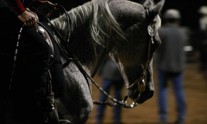 Baywood Farms - Las Vegas: $22 for a One-Hour Private Horseback Riding Lesson at Baywood Farms (a $45 value)