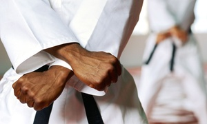 USA Karate: 10 Cardio-Kickboxing Classes or One Month of Unlimited Cardio-Kickboxing Classes at USA Karate (Up to 61% Off)