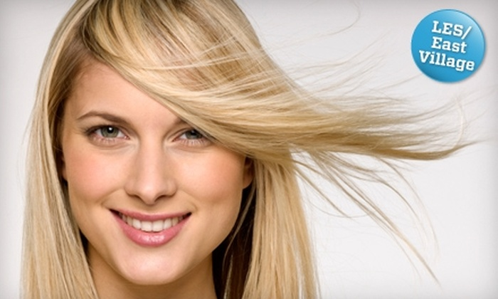 The Little Hair Shoppe - Bowery: $20 for a Professional Blow-Dry at The Little Hair Shoppe ($45 Value)