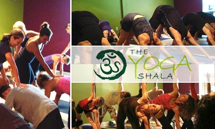 The Yoga Shala - Winter Park: $49 for One Month of Unlimited Yoga at The Yoga Shala ($160 Value)