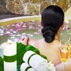Up to 54% Off Spa Package in Mount Prospect