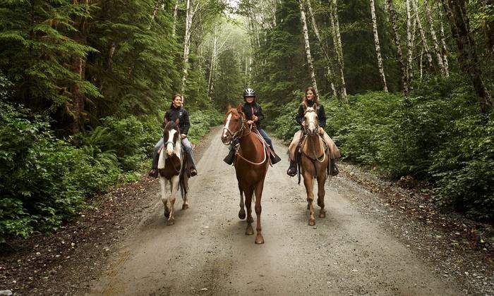 Lightfoot Horse Farm - Paradise: $217 for $395 Worth of Horseback Riding — Lightfoot Horse Farm