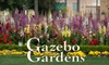 Gazebo Gardens - Fresno High-Roeding: $10 for $20 Worth of Plants and Flowers at Gazebo Gardens