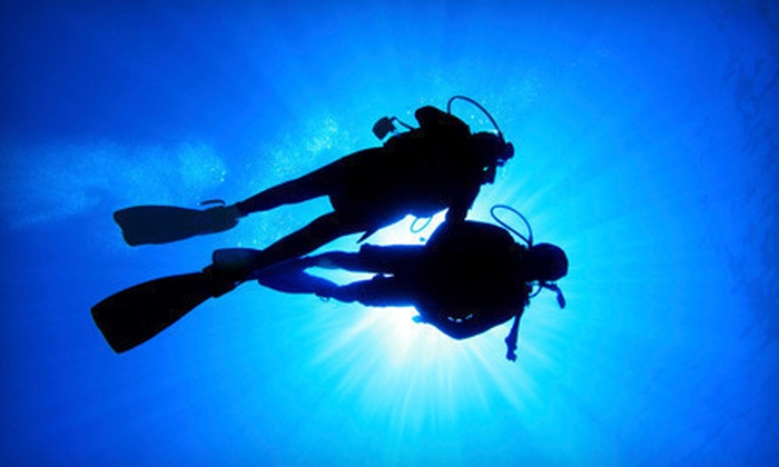 Travel & Adventure Show - Long Beach Convention Center: One-Day Outing for Two or Four to Travel & Adventure Show on February 18 and 19 in Santa Clara (Up to 56% Off)