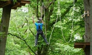 Kletterwald Diez: 3 Stunden Klettern für Zwei oder Vier im Kletterwald Diez (bis zu 51% sparen*)