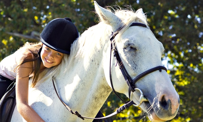 Rock 'n Horse Farm - Belchertown: $35 for $70 Worth of Horseback-Riding Lessons at Rock 'n Horse Farm