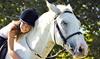 Rock n' Horse Farm - Belchertown: $35 for $70 Worth of Horseback-Riding Lessons at Rock 'n Horse Farm