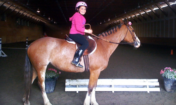 A&T Equestrian - South Surrey: One-Hour Child, Teen, or Adult Horseback-Riding Lesson at A&T Equestrian (Up to 54% Off)