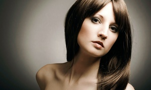 E.A. Wells Hair Design: Cut, Shampoo, and Blow-dry with Optional Touchup Color or Partial Highlights (Up to 64% Off)