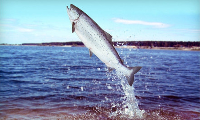 A Better Catch Guide Service - Salem: $279 for Eight-Hour Guided Salmon-Fishing Trip for Four from A Better Catch Guide Service ($700 Value)
