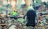 Coal Tubin' - Southmont: Tube and Cooler Rental for Two or Four or Overnight Hiking Package for Two, Four, or Six at Coal Tubin' (Up to 51% Off)