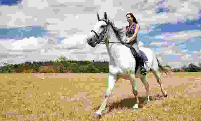 Fun With Horses - Fun With Horses: One or Three 60-Minute Horseback-Riding Experiences at Fun With Horses (Up to 46% Off)