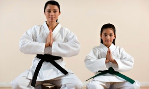Master Yu's Power Kick: Four Weeks of Martial-Arts Classes for Kids or Adults at Master Yu's Power Kick (Up to 63% Off)