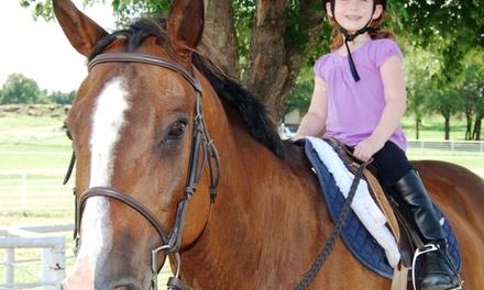 One-Hour Horseback-Riding Lesson at Cadence Equestrian Center (65% Off)