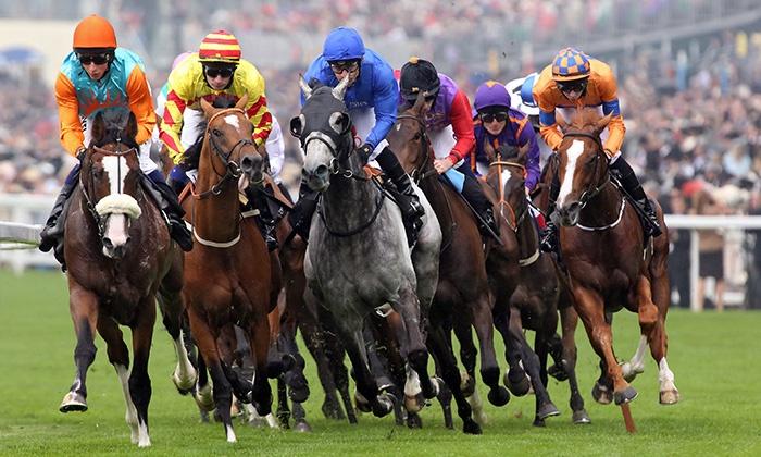 Jaxx Pferdewetten