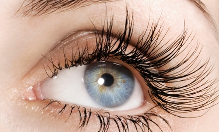 Feather-Look or Cat Eye Lash Extensions or Eyebrow Shaping at The Lashe Spot (Up to 57% Off)