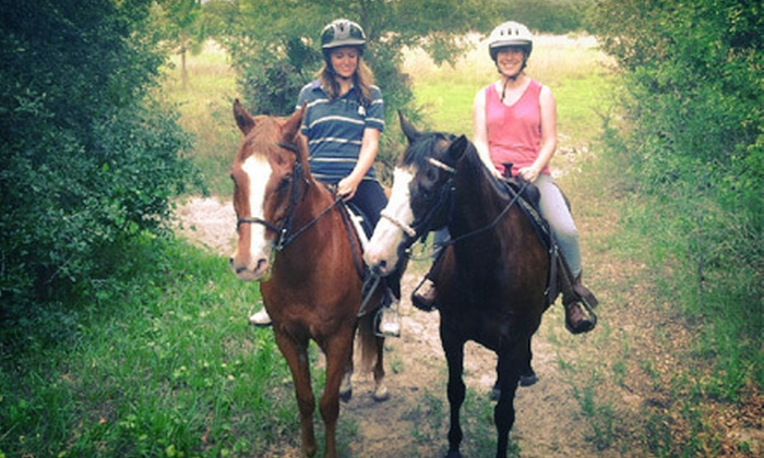 Riding Star Ranch - Punta Gorda: Saddle-Up Adventure Trail Ride for One, Two, or Four at Riding Star Ranch (Up to 56% Off)