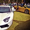 Up to 52% Off Auto and Luxury-Lifestyle Show