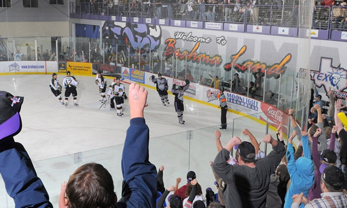 Lone Star Brahmas - NYTEX Sports Centre: Lone Star Brahmas Hockey at NYTEX Sports Centre on February 7, 8, 21, 22, or 28 (Up to 43% Off). Two Seating Options.
