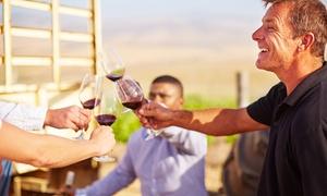 The Village Wine: Wijndegustatie aan huis: 8 wijnen met hapjes vanaf € 19,99