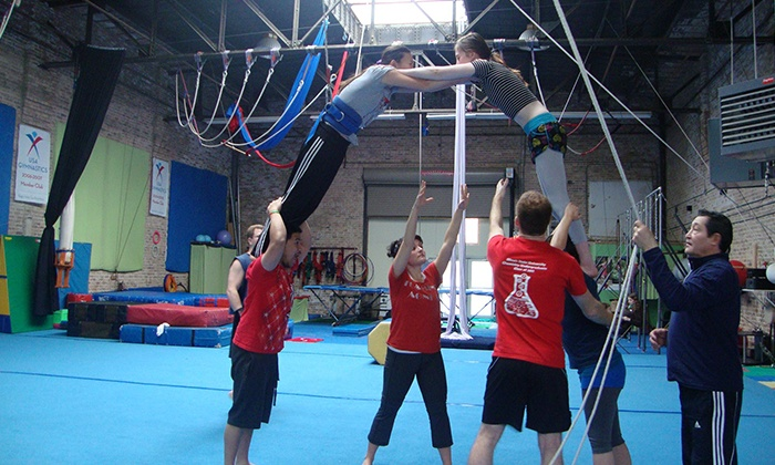 MSA & Circus Arts - Logan Square: $29 for Two Adult Sports-Acrobatics Classes at MSA & Circus Arts ($60 Value)