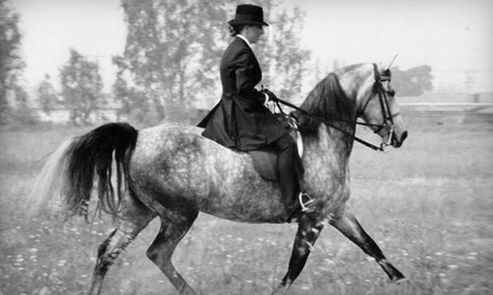 Three Angel Farm - Lizella: One or Three 60-Minute Horseback-Riding Lessons at Three Angel Farm (Up to 55% Off)