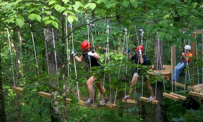 Red Mountain Park - Red Mountain Park: Ropes Course for One, Two, Four, or Six in the Hugh Kaul Beanstalk Forest at Red Mountain Park (Up to 46% Off)