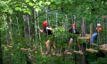 Ropes Course for One, Two, Four, or Six in the Hugh Kaul Beanstalk Forest at Red Mountain Park (Up to 46% Off)