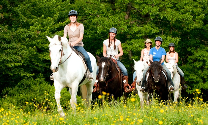 Carousel Horse Farm - Carousel Horse Farm: Beginner Trail Ride for Two or Four from Carousel Horse Farm (Up to 51% Off)