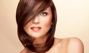 Elite coiffure: Shampoing, soin, coupe et brushing, technique au choix en option, dès 22 € au salon Elite Coiffure