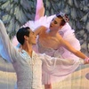 BalletFleming – Up to 50% Off Holiday Performance
