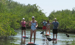 Paddleboard Connection: Paddleboard Lesson and Tour for Two or Four at Paddleboard Connection (Up to 58% Off)