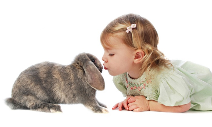 Studio One to One - Waterford: $19 for a 30-Minute Easter Photo Shoot with Print at Studio One to One ($59 Value)