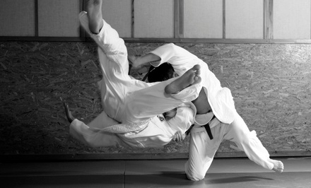 Brazilian Jiu Jitsu at American Fight Club Brazilian Jiu Jitsu (Up to 83% Off). Four Options Available.