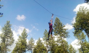 $29.99 For A Three-hour Aerial Adventure With A Zipline At Adventure Dynamics ($65 Value)