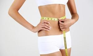 Poradnia Dietetyczna Nutrimentum: Analiza składu ciała z rozpisaniem diety od 39,99 zł w Nutrimentum w Gdyni