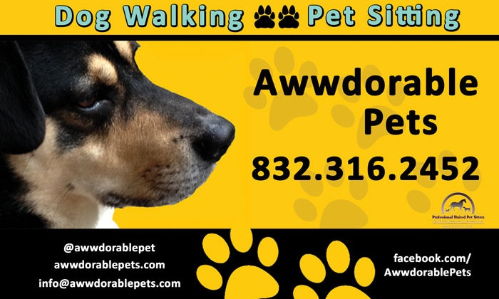 Awwdorable Pets - Houston: Two Days of Pet Sitting Services from Awwdorable Pets (28% Off)