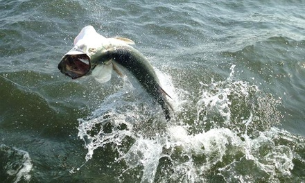 $425 for a Private Shark- or Tarpon-Fishing Charter for Four from Goin' Coastal Charters ($750 Value)